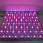 Mvpower 225 LED Lampe de Croissance 15W Lampe de Floraison Lumiere Rouge Bleu(165 Rouge+ 60 Bleu LED) Elcairage pour Culture Plantes de la marque Mvpower image 3 produit