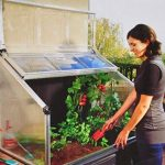 Palram chalet & jardin - serre surélevée adossable 0,74 m2 chalet&jardin de la marque Palram image 3 produit