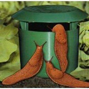 Piège à limaces bio de Timtina 4 Stück Schneckenfallen de la marque Tim Tina image 0 produit