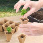 pot biodégradable pour semis TOP 1 image 1 produit