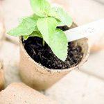 pot biodégradable pour semis TOP 10 image 3 produit