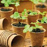 pot biodégradable pour semis TOP 10 image 4 produit