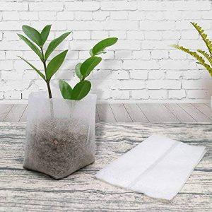 pot biodégradable pour semis TOP 4 image 0 produit