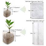 pot biodégradable pour semis TOP 4 image 2 produit