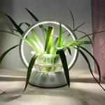 Pot de fleurs avec lampe LED rechargeable au câble USB - Fonctionne au toucher - Pour plantes d'intérieur, jardinage à la serre, bureaux, etc. - Par Maimai de la marque MAIMAI image 2 produit