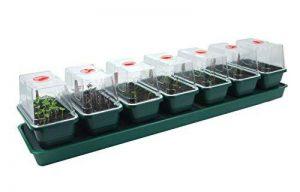 Poupée de jardinage auto-arrosante Britten & James®. 7 en 1 Windowsill Propagator ensemble. Sept mini-propagateurs individuels de qualité professionnelle avec un système unique d'arrosage alimenté par capillarité. Les couvercles transparents avec des côté image 0 produit