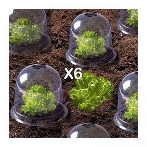 ProBache - Cloche à salades X6 serre de protection pour plants de la marque Probache image 0 produit