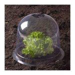 ProBache - Cloche à salades X6 serre de protection pour plants de la marque Probache image 1 produit