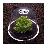 ProBache - Cloche à salades X6 serre de protection pour plants de la marque Probache image 3 produit