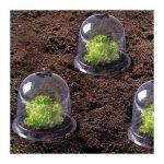 ProBache - Cloche à salades X6 serre de protection pour plants de la marque Probache image 4 produit