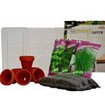 Prêt à jardiner Mini serre herbes aromatiques de la marque Prêt à jardiner image 1 produit