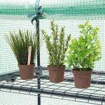 Relaxdays 10018891-349 Serre de Jardin Étagère Bâche Amovible Balcon Terrasse Tente de la marque Relaxdays image 3 produit