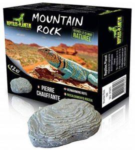 Reptiles Planet Mountain Rock Pierre Chauffante pour Reptile/Amphibien 12 W de la marque Reptiles Planet image 0 produit