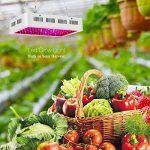 Roleadro LED Horticole Lampe 300W,Lampe de Croissance et LED Floraison Horticole pour Plante Culture Indoor avec IR UV Lumière de la marque Roleadro image 1 produit