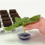 Root riot x 24 - bouturage- germination - Growth technology - Prrr24 de la marque Growth Technology image 4 produit