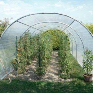 Serre à tomates 8m² - 2 x 4m - sans façade de la marque Richel image 0 produit