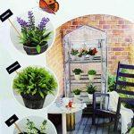 Serre de Jardin 4 Etages 130x50x45cm - Jardinage Cultiver Plante Fleur 406 de la marque les colis noirs lcn image 1 produit