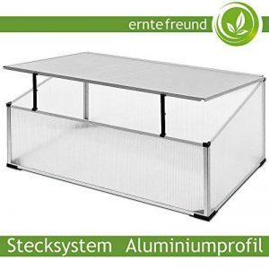 serre de jardin aluminium polycarbonate TOP 3 image 0 produit