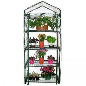 serre de jardin avec étagères TOP 1 image 0 produit