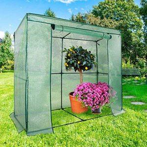 Serre de jardin casa pura Botanika   pour tomates et autres plantes   résistant aux intempéries, stabilisé UV   avec piquets de fixation inclus de la marque casa pura image 0 produit
