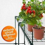 Serre de jardin casa pura Thalia transparente | avec 2 tablettes + piquets et corde inclus | pour tomates et autres plantes | résistant aux intempéries, stabilisé UV de la marque casa pura image 4 produit