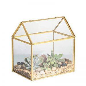 serre de jardin en verre TOP 6 image 0 produit