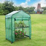 serre de jardin mini TOP 11 image 4 produit