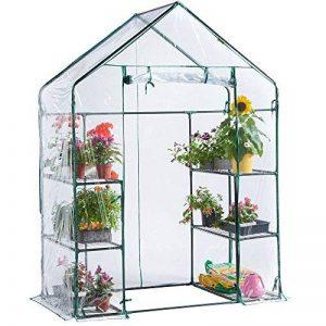serre de jardin moins de 100 euros TOP 10 image 0 produit