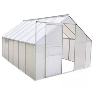 serre de jardin polycarbonate TOP 12 image 0 produit
