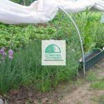 serre de jardin tonneau TOP 2 image 3 produit