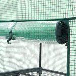 serre de jardin transparente TOP 3 image 4 produit