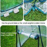 serre de jardin transparente TOP 5 image 2 produit