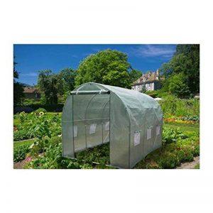 Serre de jardin tunnel 300x200x200cm - vert translucide de la marque Générique image 0 produit