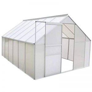 serre de jardin tunnel polycarbonate TOP 12 image 0 produit