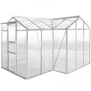 serre de jardin tunnel polycarbonate TOP 14 image 0 produit