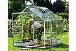 serre de jardin verre TOP 0 image 0 produit