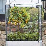 Serre en plastique avec bac de jardinage – Serre surélevé Serre de balcon env. 80 x 60 x 137 cm gris de la marque eGenuss image 3 produit