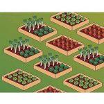 serre jardin bois TOP 2 image 2 produit