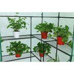 serre jardin polyéthylène TOP 7 image 4 produit