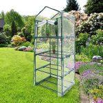 serre plastique de jardin TOP 2 image 1 produit