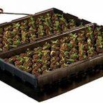 serre pour semis chauffante TOP 4 image 1 produit