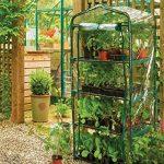 serre pvc pour jardin TOP 0 image 2 produit