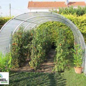 Serre à tomates 24m² - 3 m x 8 m - sans façade de la marque Richel image 0 produit
