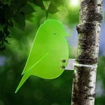 serre verte ou transparente TOP 6 image 1 produit