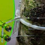 serre verte ou transparente TOP 6 image 4 produit
