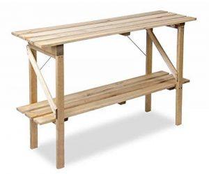 Table de Culture Pliable à Étages en bois Lacewing - L 1.22m x P 35cm de la marque Primrose image 0 produit