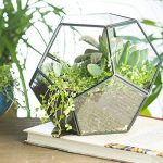 table de serre pour jardinage TOP 11 image 1 produit