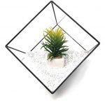 table de serre pour jardinage TOP 3 image 1 produit