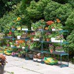 étagère serre de jardin TOP 10 image 1 produit