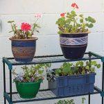 étagère serre de jardin TOP 8 image 1 produit